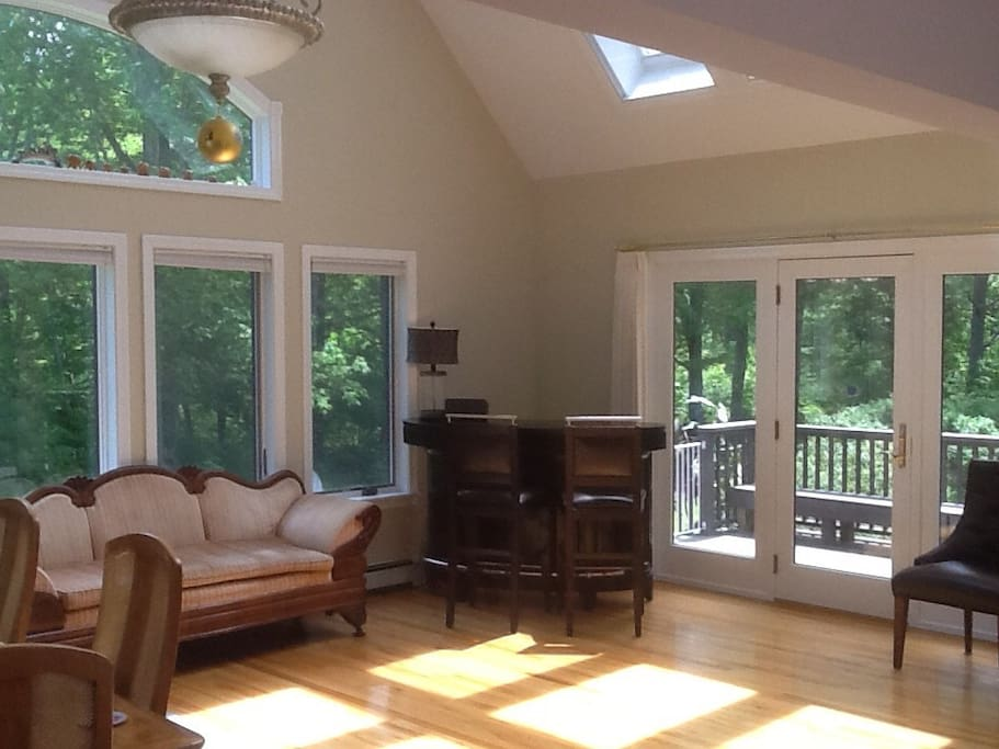 High Ceiling Great Room with six skylights on south side of house. This room has a large dining table and a bar.