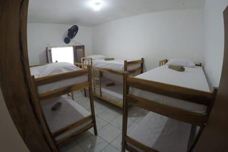 Onion Hostel - 1 Cama de Solteiro em Beliche