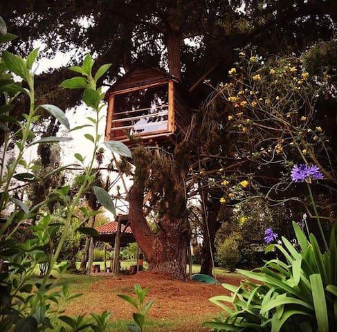Tu Santuario en Tabio - Tenjo - Huis