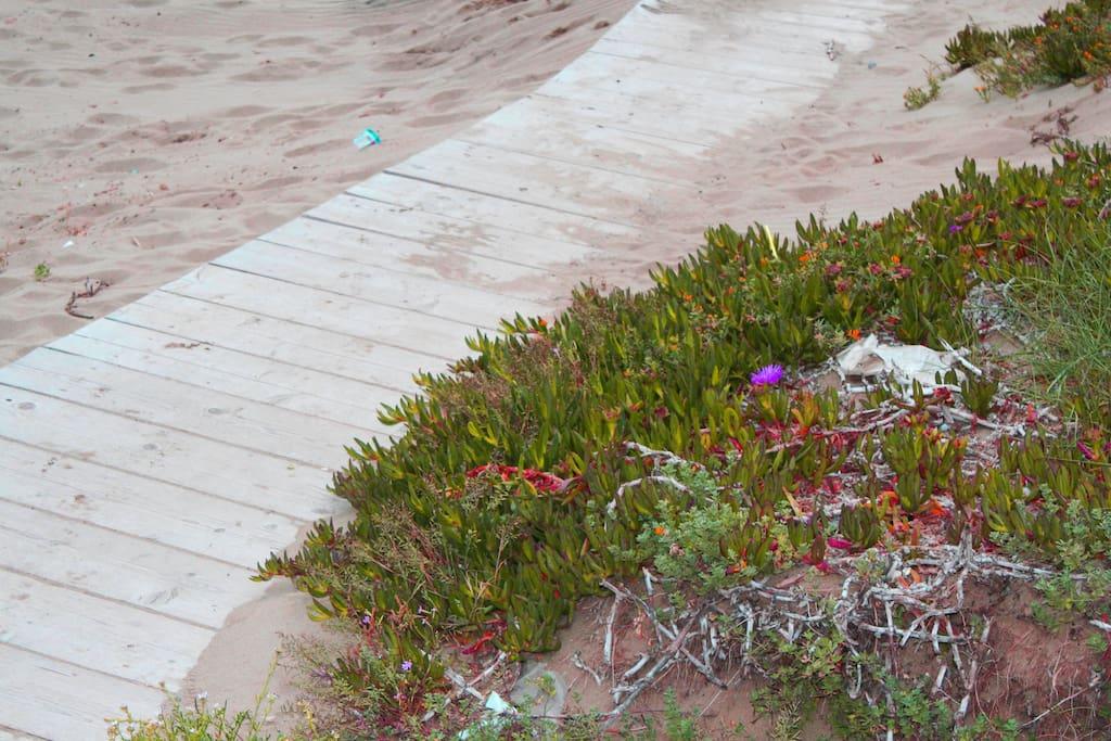 accesso alla spiaggia attrezzata
