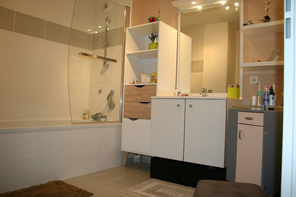 salle de bain. grande baignoire et douche