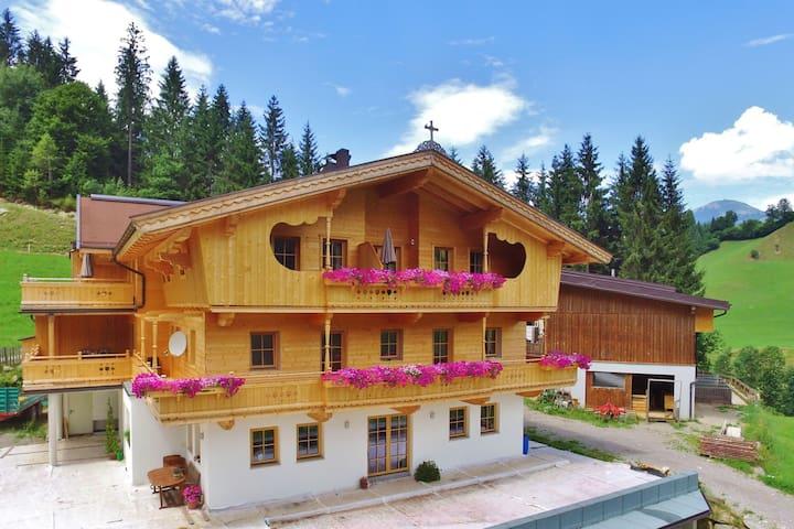 Hermoso Apartamento cerca de la zona de esquí en Westendorf