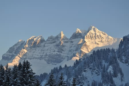 Family friendly appt on the slopes - Les Crosets - Apartmen