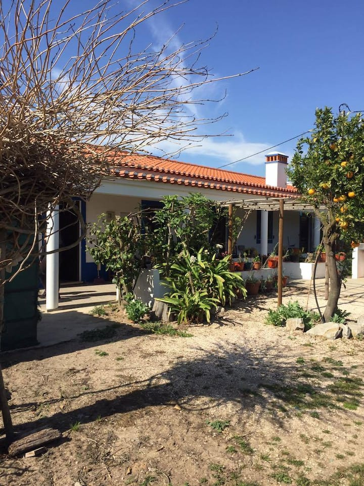 Rustic Nature House (3,1Km from Zambujeira do Mar)