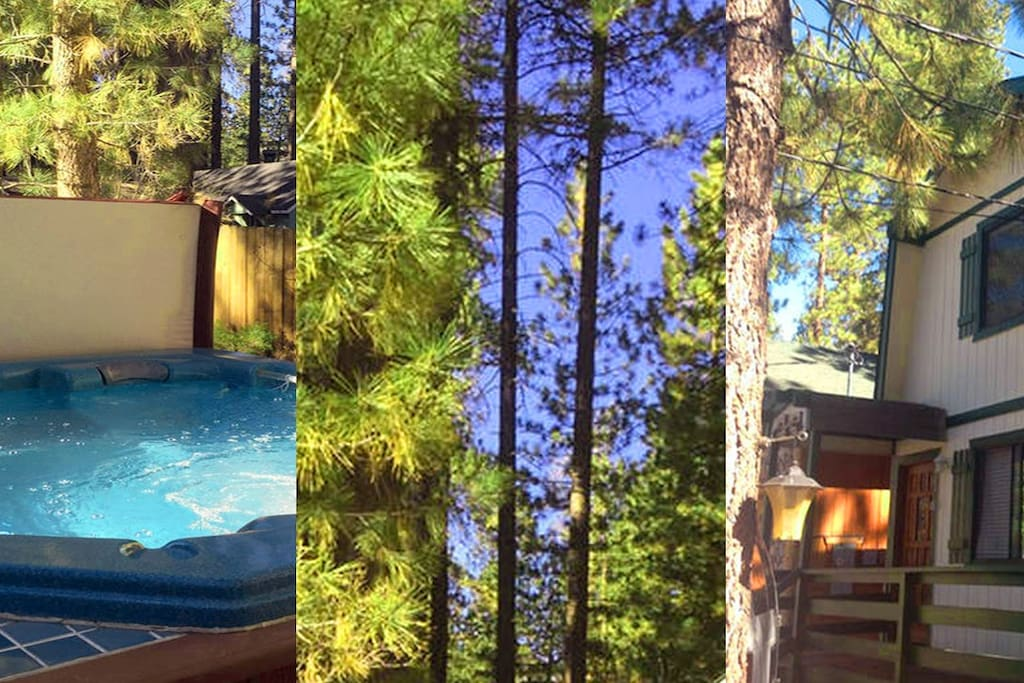 Come enjoy our mountain wonderland in big bear cabins for Cabins for rent in big bear lake ca