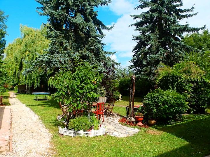 Grand gîte proche Beauval et Châteaux de la Loire