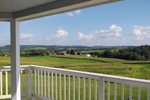 The view to the south east, off of the wrap around deck on the main floor