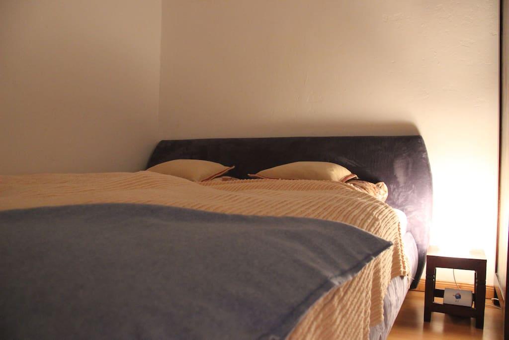 großes, bequemes  Bett (1,60m Breite)