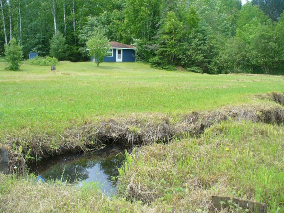 View of creek and cabin