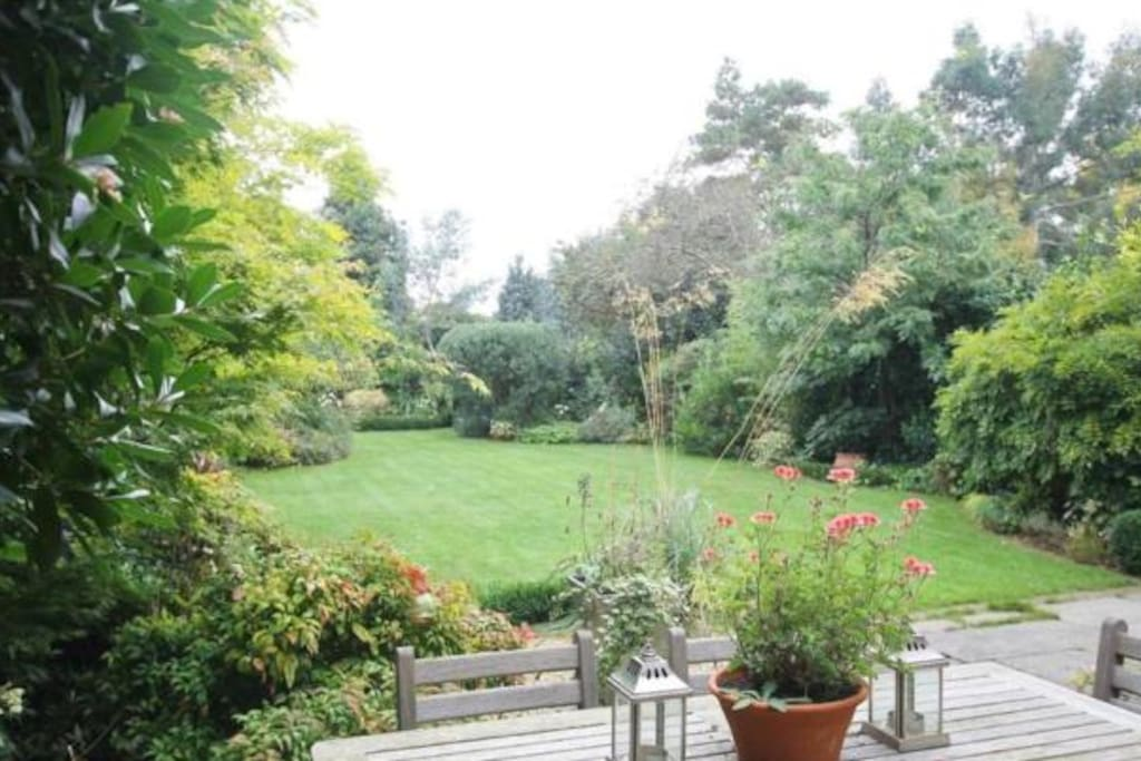 Beautiful mature garden with hidden trampoline at the back