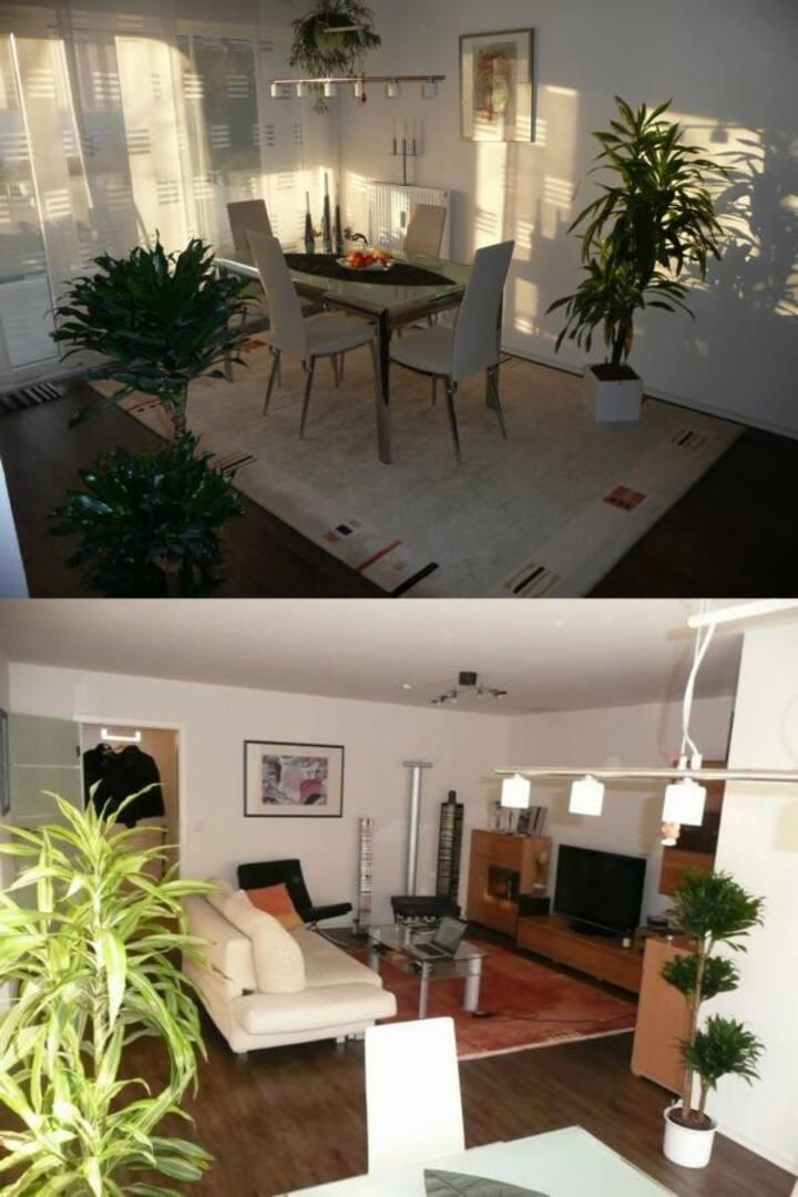 Nice apartment south of HEIDELBERG