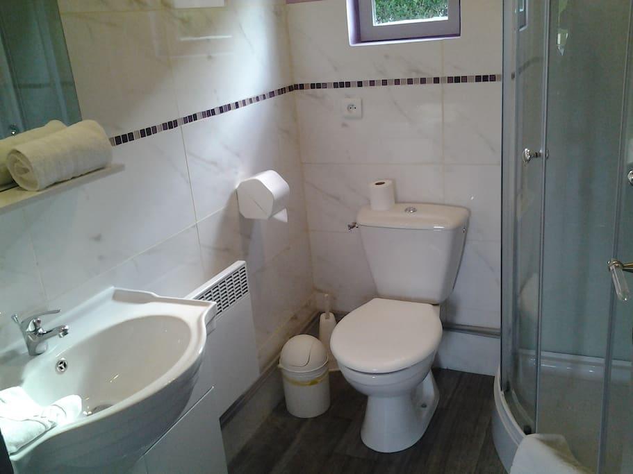 La salle de douche avec wc et lavabo