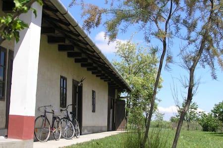 Family-friendly cottage - Visznek - Huis