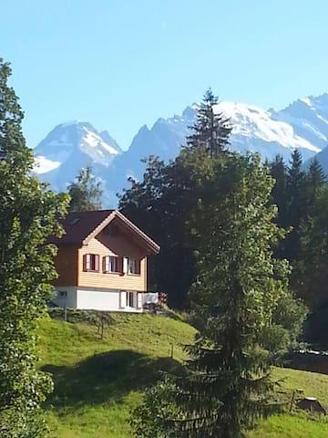 Chalet Schnäggehüsli - Lauterbrunnen - Chalet