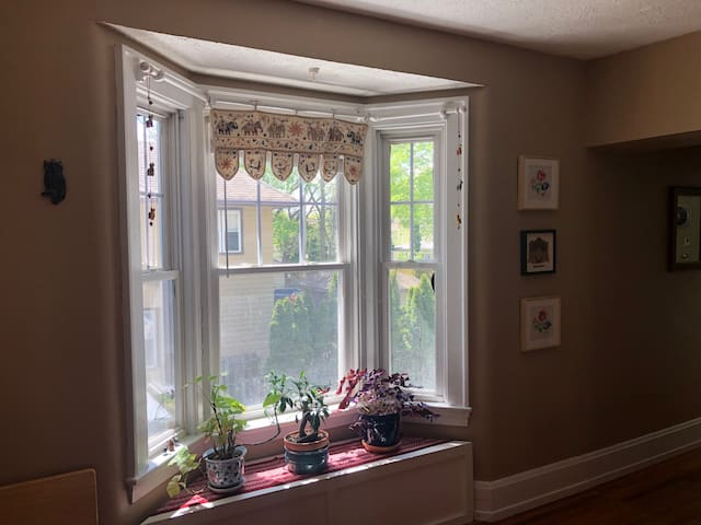 Plenty of south-facing windows with great light