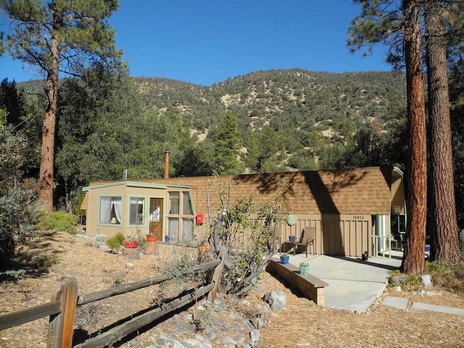 Cute romantic cabin close to la cabins for rent in pine for Romantic big bear cabins