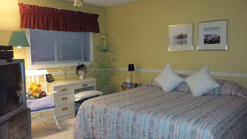Spacious Kingsize guest room with drawers and desk space overlooks the garden.