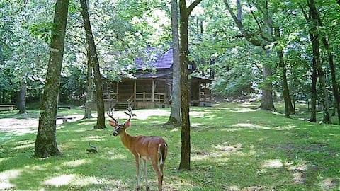 The Farmhouse Cabin with Deer View @ Bean Creek