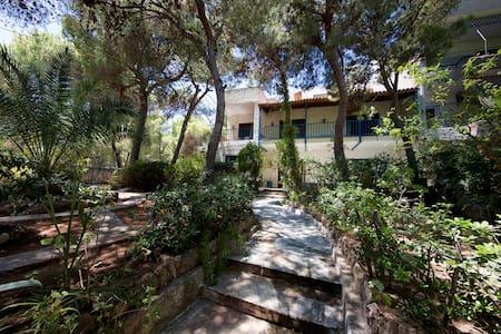 Villa Mati - Rafina