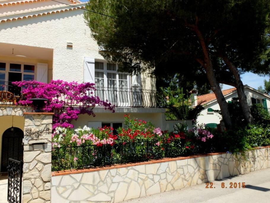 La terrasse de l'appartement bien caché par les lauriers en fleurs (vue de la rue)
