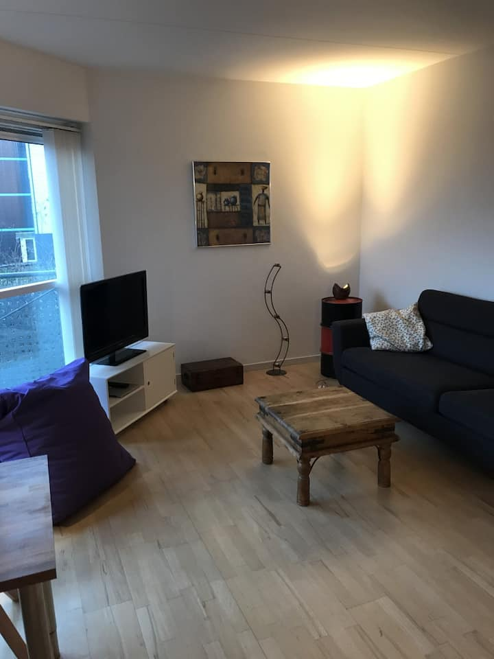 Clean, cozy and modern 60m2 flat in Aarhus N.