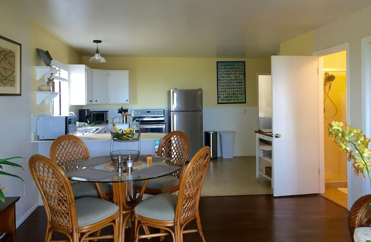 Open room floor plan, airy, with natural accents of real bamboo floors...