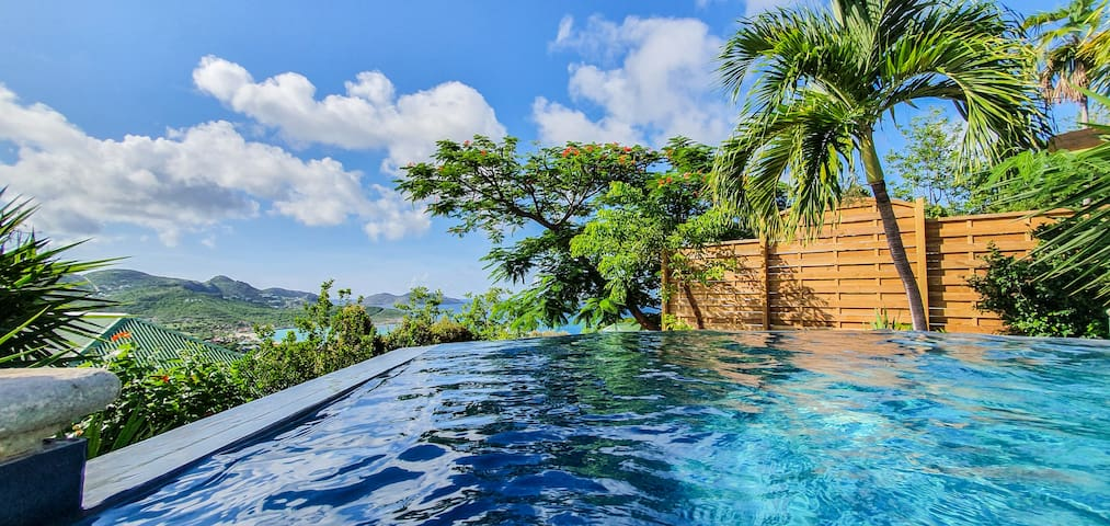 Luxury Villa Casanova with infinity pool