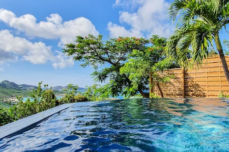 Luxury Villa Casanova with infinity pool