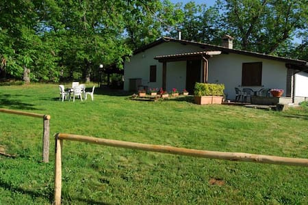 "Bed and Breakfast ""Il Castagneto"" - Canepina"