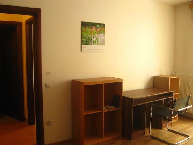 Byt-Flat 2+KK - Karlovy Vary - Huis