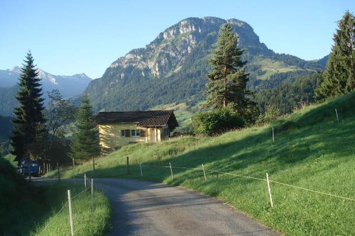 comfortable cottage in the alps - Vorderthal - Cabaña