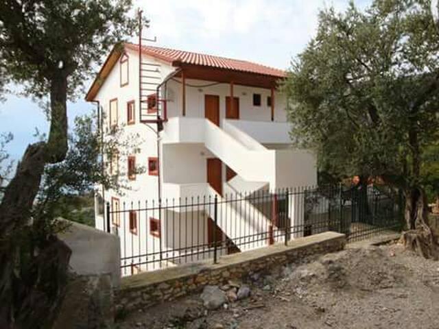 Vila Nika - Palasë - Villa