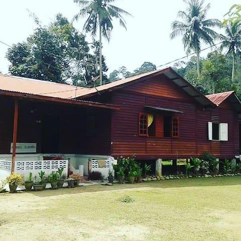 Homestay berkonsepkan dan dengan suasana kampung