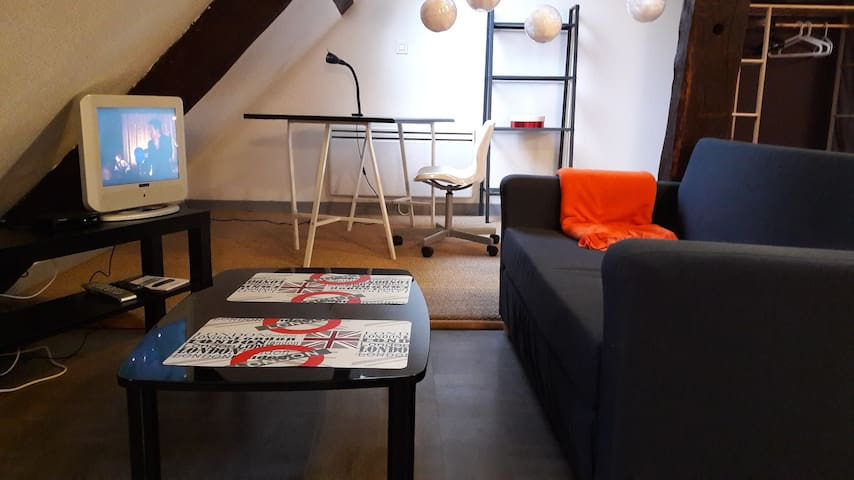 T1 BIS COSY PLEIN  CENTRE, WIFI . - Troyes - Apartment