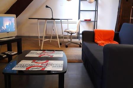 T1 BIS COSY PLEIN  CENTRE, WIFI . - Troyes - Apartament