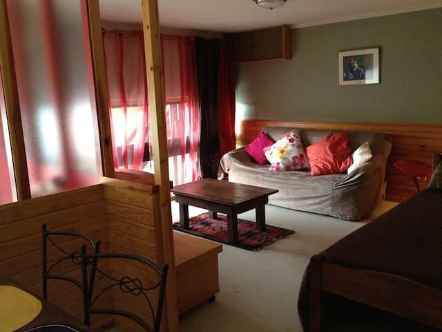 Appartement au coeur de l'Aubrac - saint-chély d'aubrac - Apartament