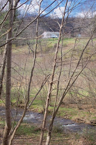 Cottage from old road across Davis Creek