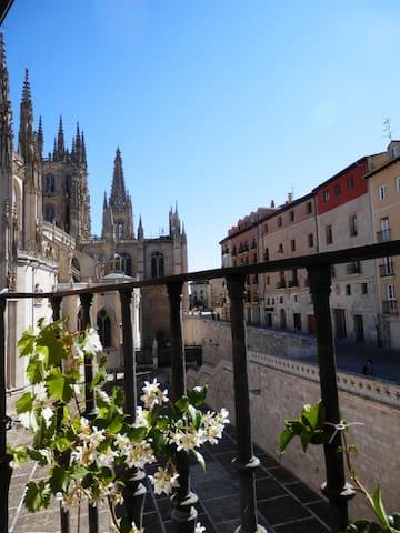 Vistas Catedral y Camino Santiago desde cocina