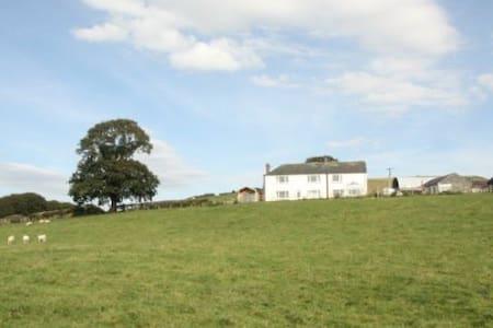 Cob Cottage - llanddewi Brefi - House