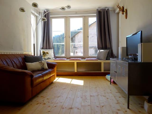 Alte Scheune Ferienwohnung - Dachsberg - Apartamento
