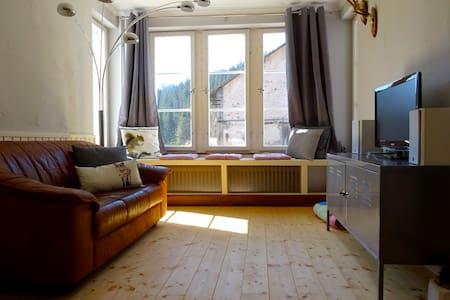 Alte Scheune Ferienwohnung - Dachsberg