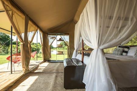 Corocora Camp Luxury Camp Los LlanosQuadruple tent
