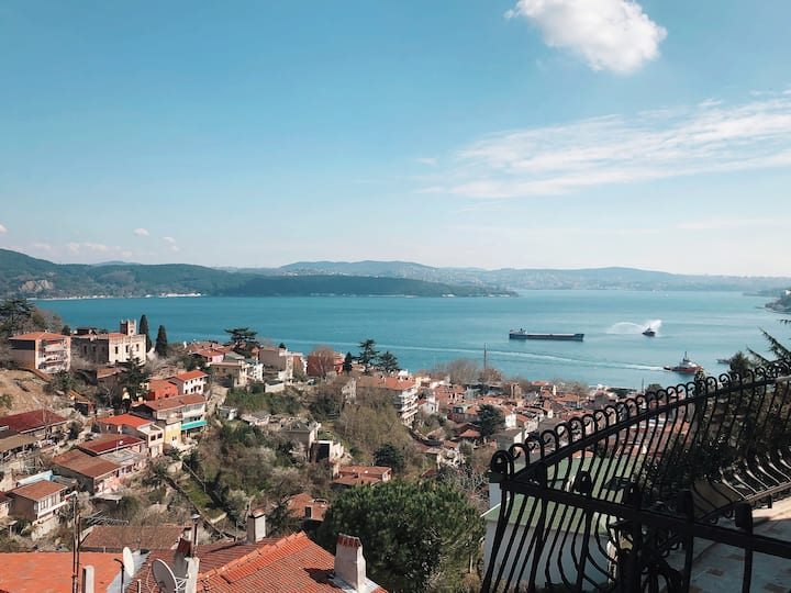Luxury Villa with Amazing Views of the Bosporus