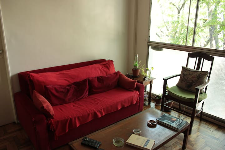 AWESOME APARTMENT FOR 1 (or COUPLES) - Buenos Aires