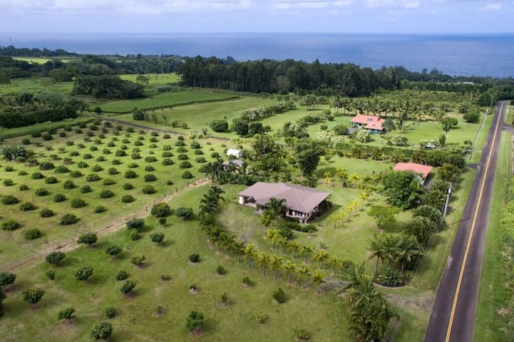 Family Fruit Farm - Hakalau - House