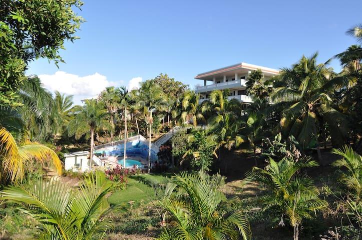 Oasis Resort - Pool View