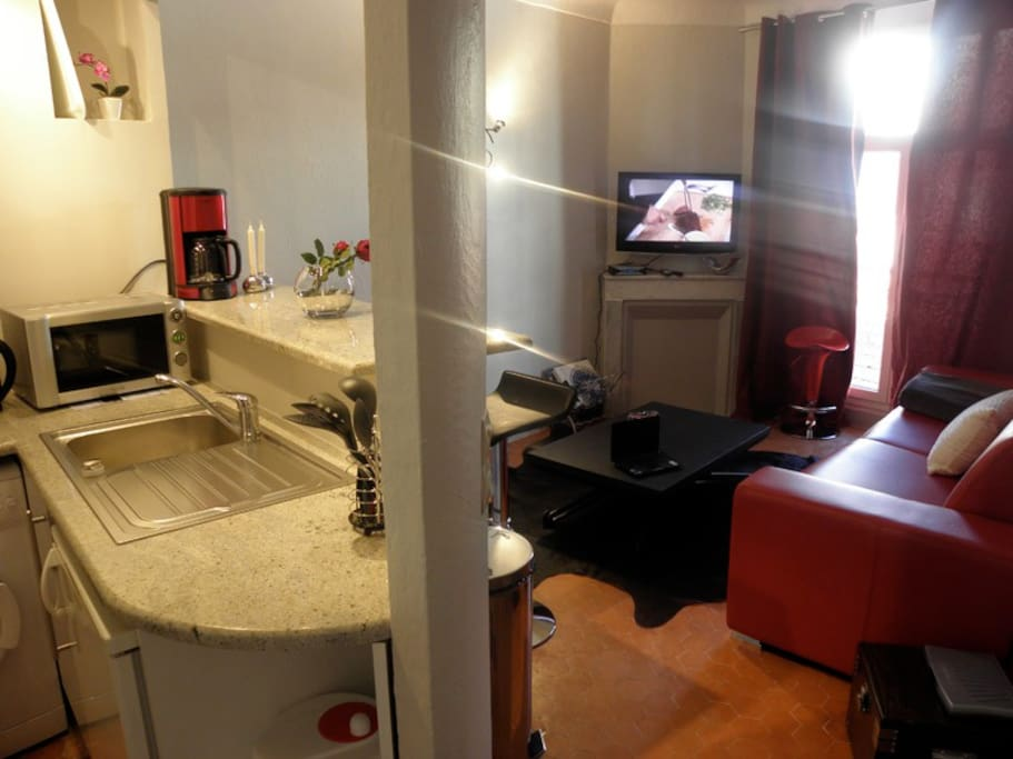 Bar/Kitchen , big sofa bed, HD Tv, wireless Internet, Air conditionning, table convertible to 4 seats