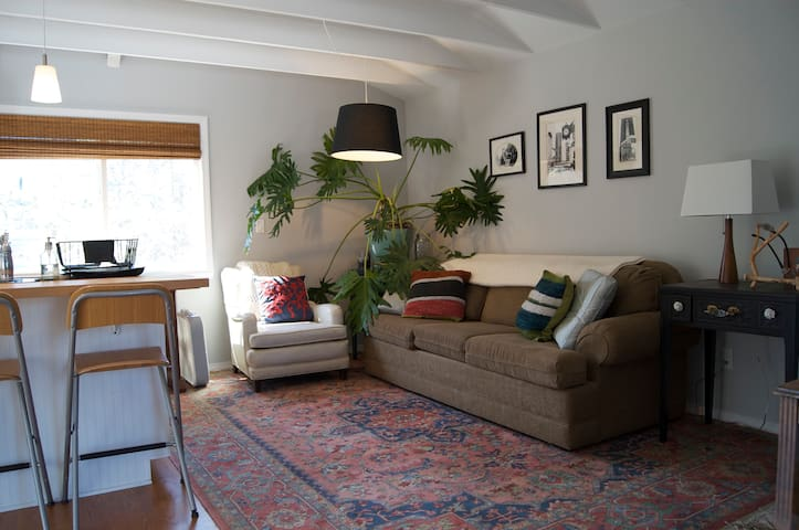 Bright, comfortable living room includes queen-sized sofa bed.