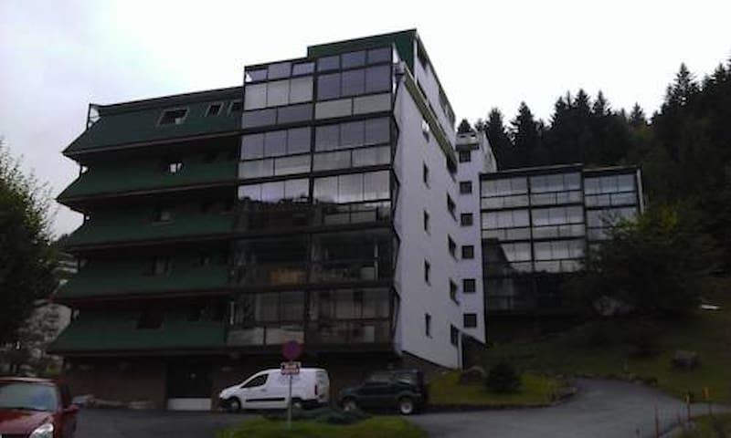 studio meublé la bresse - La Bresse - Condominio