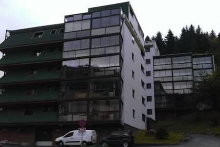 studio meublé la bresse - La Bresse - Condominium